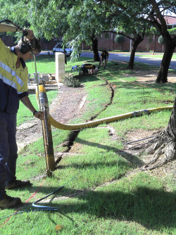 Environmentally friendly - trenching around tree roots to install electrical cable - minimal disturbance to vegetation